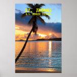 Palmera y puesta del sol de la isla caribeña, St T Poster
