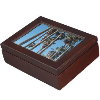 palmeras 2 cajas de recuerdos