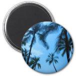 Palmeras azules de Hawaii Imanes