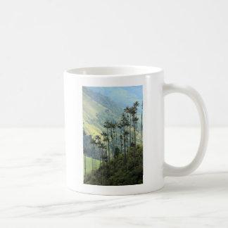 Palmeras colombianas de la cera en el valle de taza clásica