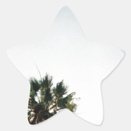 Palmeras de California Pegatina En Forma De Estrella