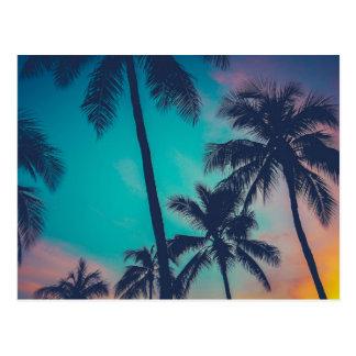 Palmeras de Hawaii en la puesta del sol Postales