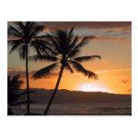 palmeras de la escena de la playa tarjeta postal