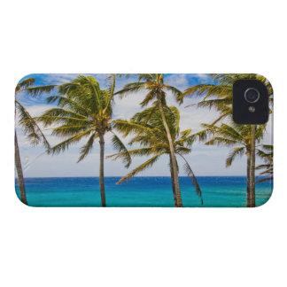 Palmeras del coco (nucifera de los Cocos) que se iPhone 4 Case-Mate Cárcasas
