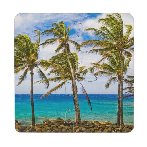 Palmeras del coco (nucifera de los Cocos) que se s Posavasos De Puzzle