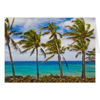 Palmeras del coco (nucifera de los Cocos) que se s Tarjetón