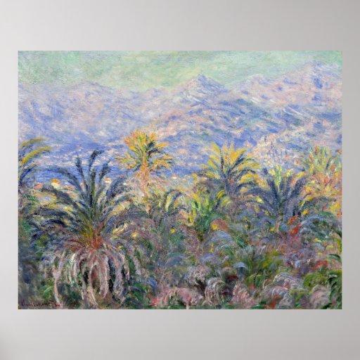 Palmeras en Bordighera - Claude Monet Posters