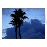 Palmeras en el cielo azul tarjeta