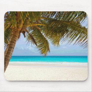 Palmeras en el mar y el cielo azules de la playa tapetes de ratones