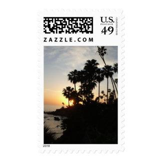 Palmeras en el sello de la puesta del sol de Lagun