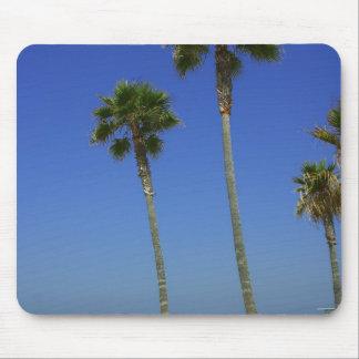 Palmeras en la playa de Venecia Alfombrillas De Raton