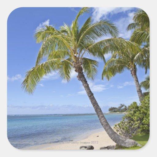 Palmeras en la playa en Hawaii Calcomania Cuadrada Personalizada