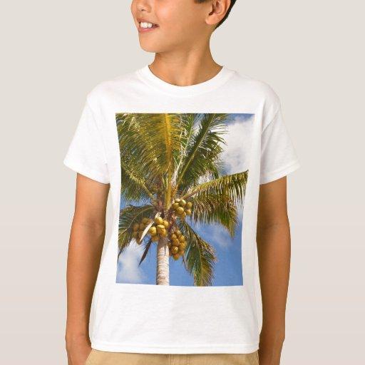 palmeras en la playa playera