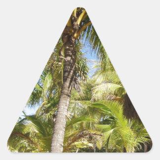 Palmeras en México Calcomanías Triangulos