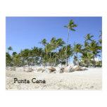 palmeras en una playa tropical postales