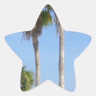 palmeras felices en la playa arenosa pegatina en forma de estrella