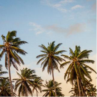 palmeras llavero fotográfico