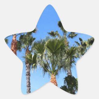 Palmeras Pegatina En Forma De Estrella