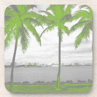 Palmeras verde de Miami, la Florida Posavaso