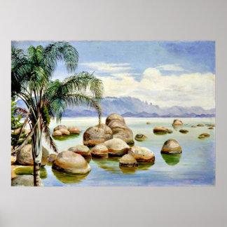 Palmeras y cantos rodados en la bahía de Río, el B Póster