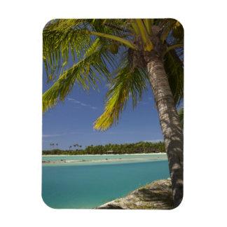 Palmeras y laguna, centro turístico isleño de la e imán de vinilo