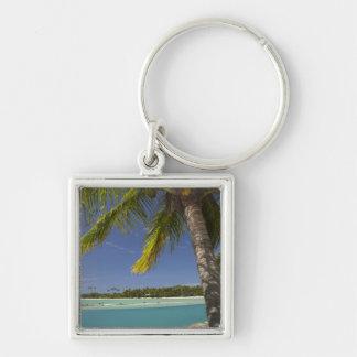 Palmeras y laguna, centro turístico isleño de la e llaveros
