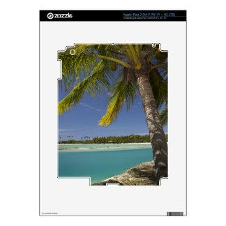 Palmeras y laguna, centro turístico isleño de la iPad 3 skins