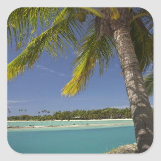 Palmeras y laguna, centro turístico isleño de la pegatina cuadrada