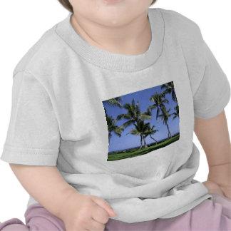 Palmeras y océano Curvy Camisetas