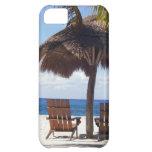 Palmeras y playa de México de las sillas