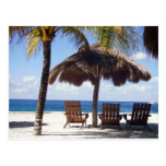 Palmeras y playa de México de las sillas Postal