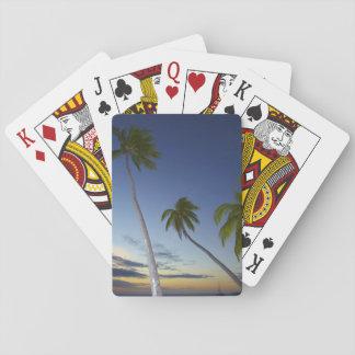 Palmeras y puesta del sol, centro turístico isleño baraja de póquer