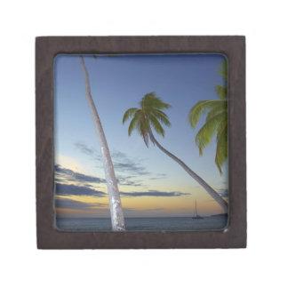 Palmeras y puesta del sol, centro turístico isleño caja de regalo de calidad