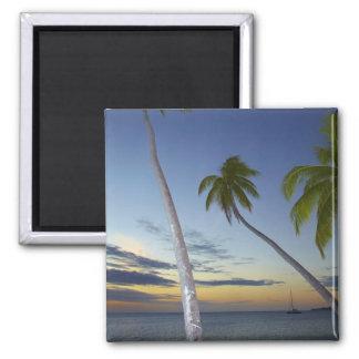 Palmeras y puesta del sol, centro turístico isleño imanes de nevera