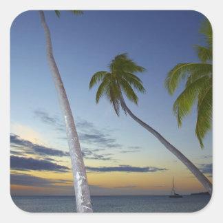 Palmeras y puesta del sol, centro turístico isleño pegatina cuadrada