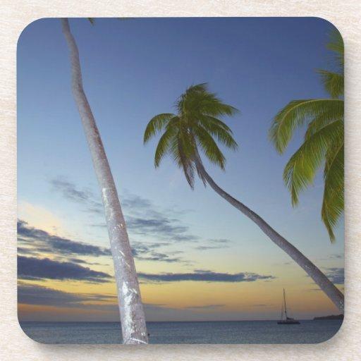 Palmeras y puesta del sol, centro turístico isleño posavasos de bebidas