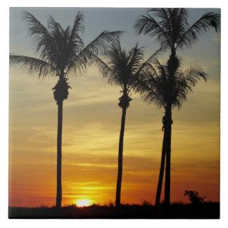 Palmeras y puesta del sol, playa de Mindil, Darwin Teja Cerámica