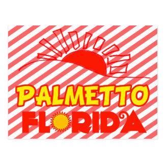 Palmetto, Florida Postcard