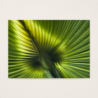Palmetto Frond Abstract - ACEO 11 Business Card