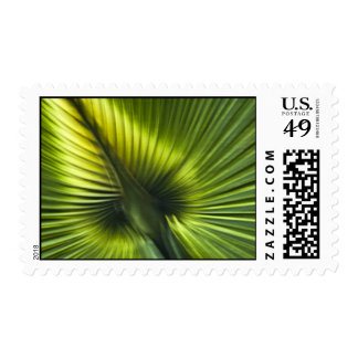 Palmetto Frond Abstract Stamp