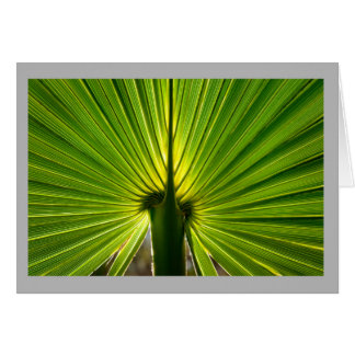 Palmetto leaf 3 card