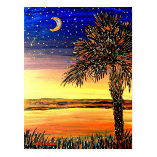 Palmetto Sunset Post Card