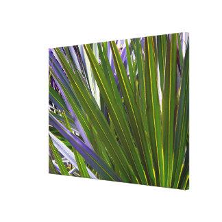 Palmetto Tropicale Canvas Print