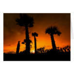 Palmettos Revisited Greeting Cards