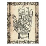 Palmistry Vintage Fortune Teller Postcard