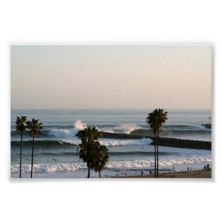Palms and Waves Poster