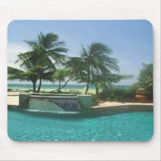 Palms between pooland sea, on a mousepad