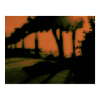 Palms by the Bay Postcard