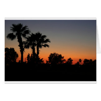 Palms in Silhouette Cards