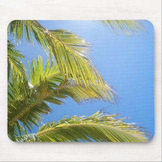 Palms In Sun Mouse Pad